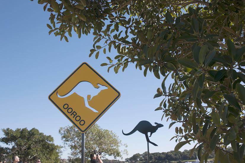 La Route du Kangourou : un raccourci vers les terres lointaines