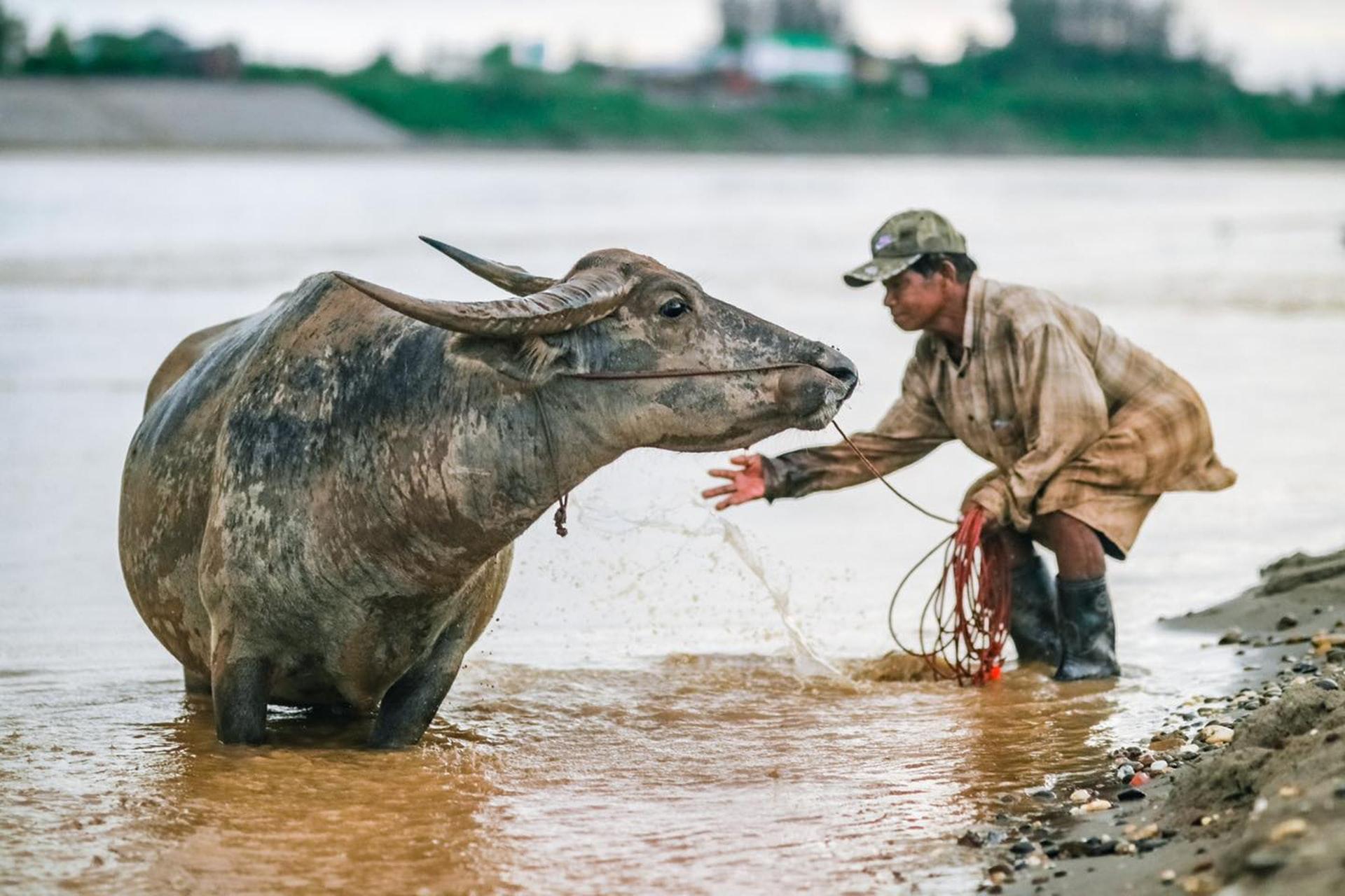 6 films pour un mini festival #03 Asie du Sud-Est
